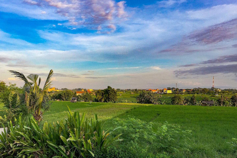 Canggu Bali - Indonésie