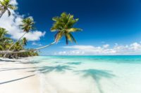 Explorer les Kiribati lors d'un prestige voyage en Polynésie